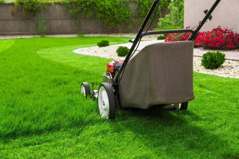 Hausmeister Dortmund Gartenpflege - Rasenflächen mähen und schneiden